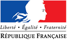 flag france with woman